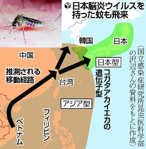 日本脳炎ウイルスを持った蚊が海外から日本に飛来する地図
