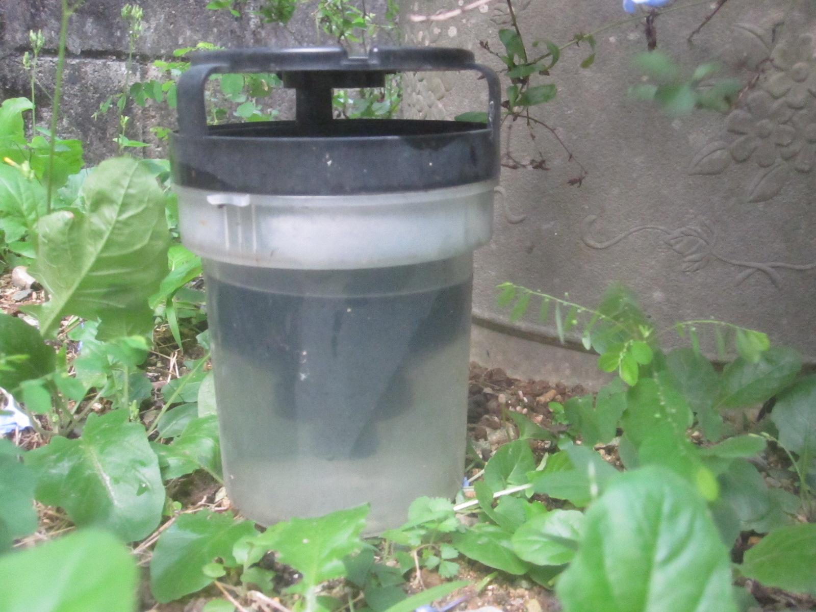 直接雨が当たらない場所、かつ蚊が休みそうな場所を狙って蚊とりんを設置する