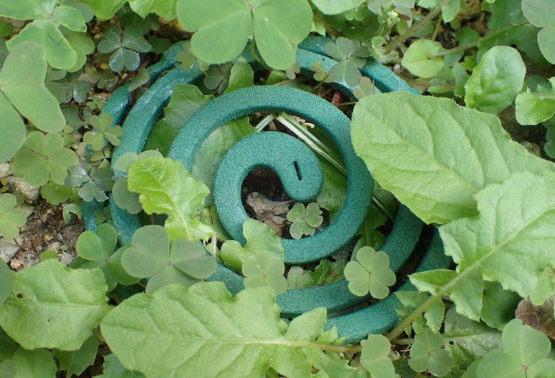 徐々に伸びてくる雑草に覆い隠される蚊取り線香