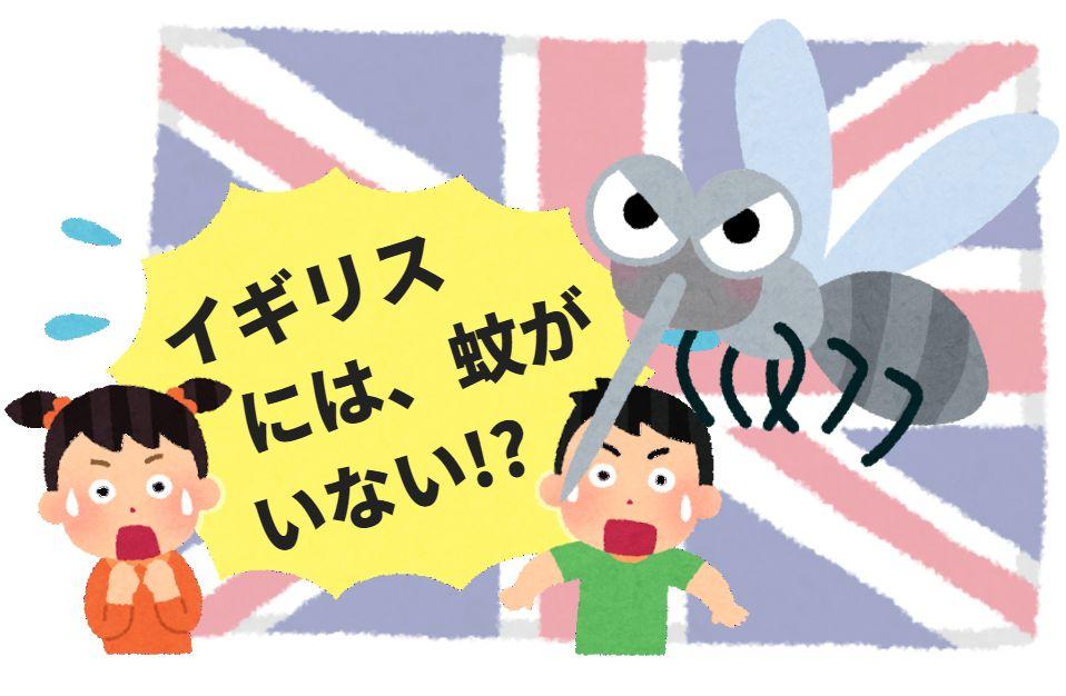 英国イギリスには害虫の蚊が生息していないの!?