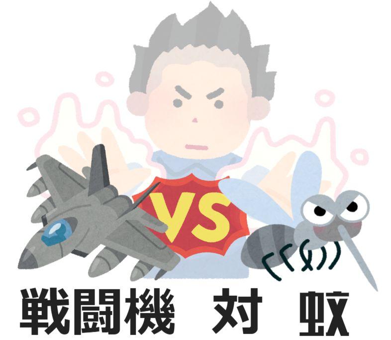 戦闘機 VS 蚊の戦い!?