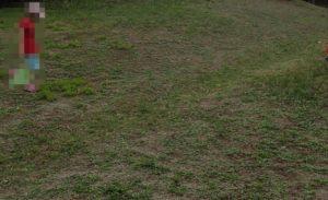 公園で昆虫採集・虫採り