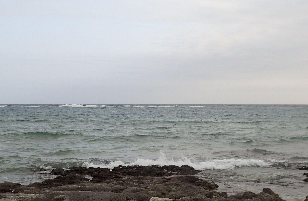 干潮時に訪れた海